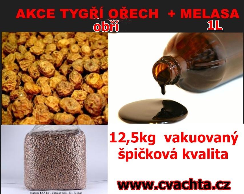 TYGŘÍ OŘECH  velký ČVACHTA 12,5KG VAKUOVANÝ