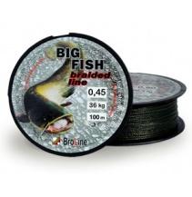 BIG FISH 100 m - 0,40 mm oválný průřez